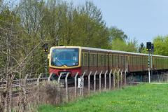 S-Bahn Berlin - Grünbergallee