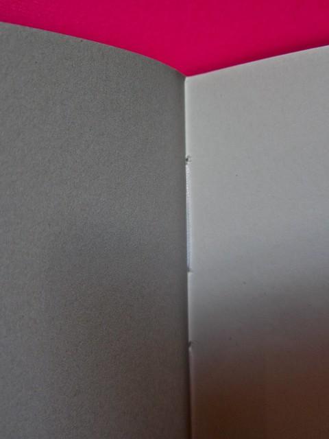 Vincenzo Latromico, Armin Linke, Narciso nelle colonie. Quodlibet Humboldt 2013. Progetto grafico di Pupilla Graphic. Pagine interne (part.), 1