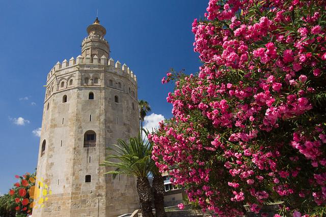 atrações imperdíveis de Sevilha: a Torre del Oro