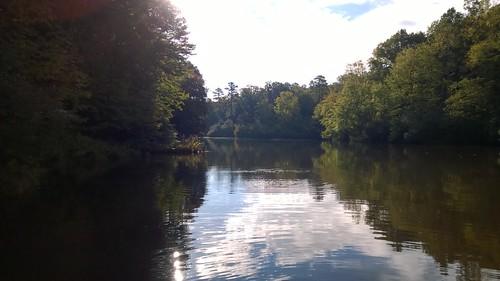 pond mahockney mahockneygardens