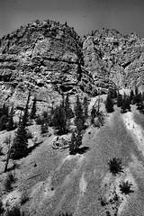 Wyoming pics 176