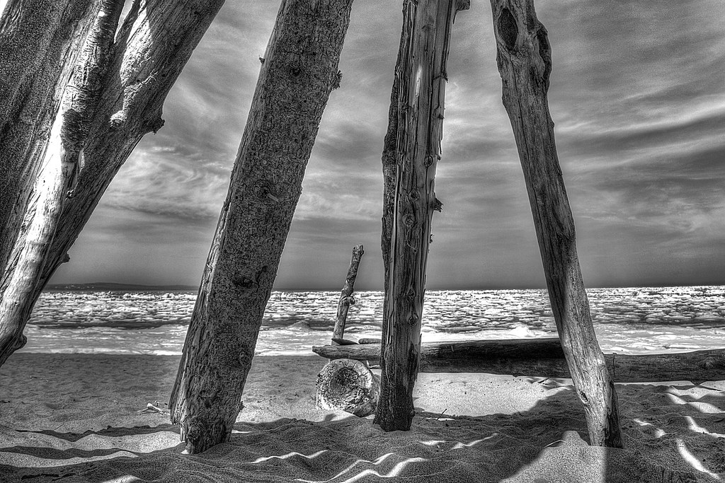 Lean To   Stack of logs at Minnesota Point   The World of