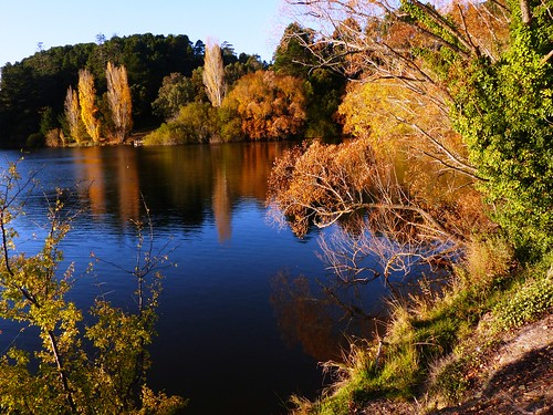 autumnscene daylesford 秋意正浓 abctv weather falls autumnfoliage victoria australia
