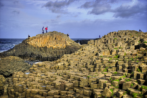 One the rocks at Giants Causeway