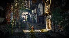 The Witcher 3: Wild Hunt / Screenshots
