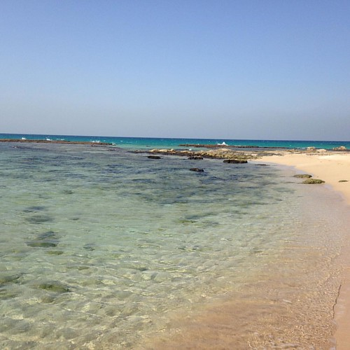 The water is warm, clear and azure blue. #beachday #achziv #bananabeach #westerngalilee