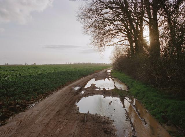 Mud Path, Saclay, April 2016