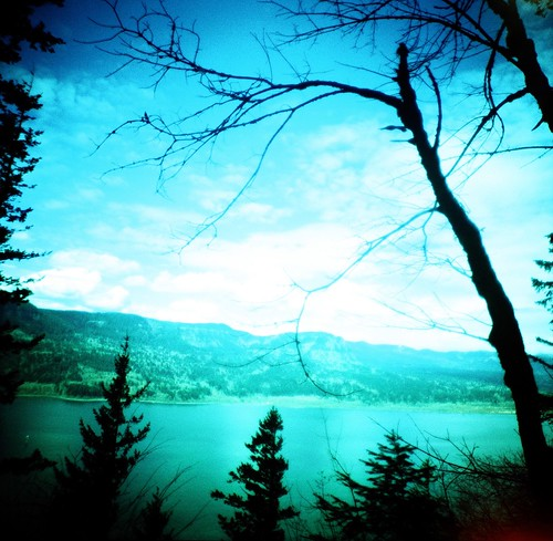 blue trees sky film nature clouds oregon analog mediumformat landscape lost lomo xpro lomography crossprocessed view kodak hiking toycamera dream scenic silhouettes lookout lightleak diana columbiariver journey ethereal unknown mysterious vista dreamy analogue damaged overlook dianaf vignetting picturesque ektachrome wander multnomahfalls columbiarivergorge multnomahcounty e100sw
