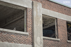 URBEX Montreal: Omnipac/dep - Pigeons
