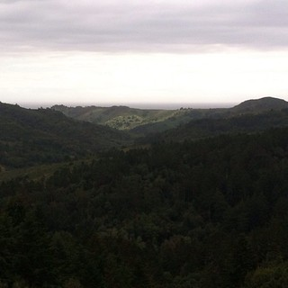 #kvptgif - Hiking in #Marin. Grateful the rain went away.
