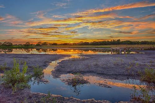 Wetland's Sunset