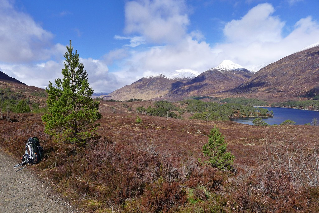 A pause in Glen Affric