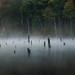 Lake Whisper