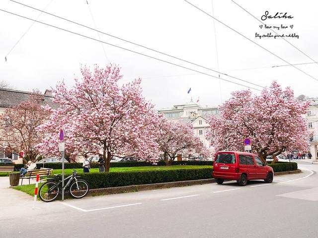 奧地利薩爾茲堡住宿推薦Hotel Bristol Salzburg (19)