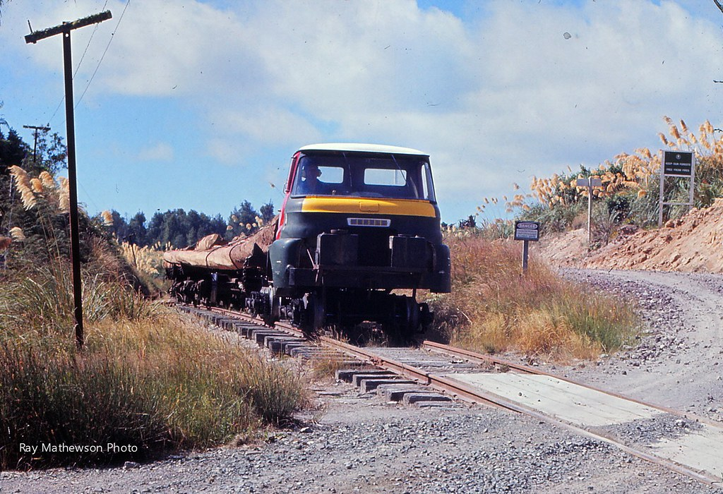 Mamaku tram State Forest road crossing Jan 1974