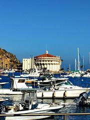 Catalina Island 04