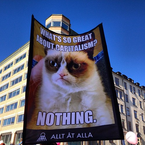 Grumpy Cat at Stockholm Mayday
