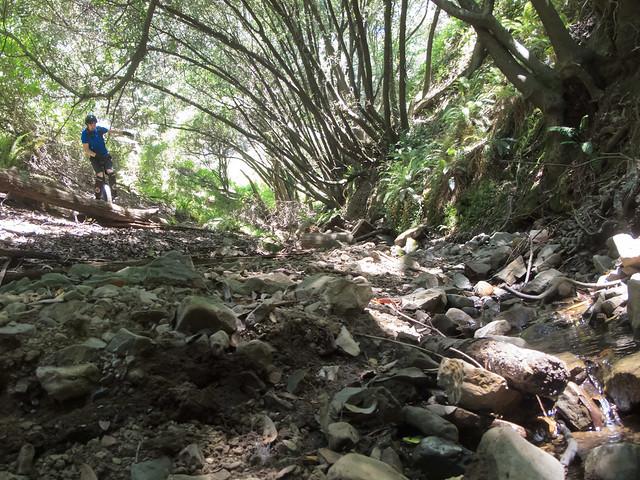 Josh at the creek