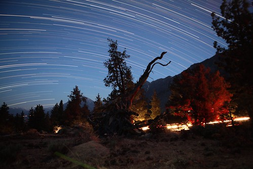 Bishop Star trails