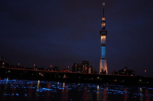 Tokyo Hotaru Light Symphony 2013-24