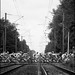 peloton crosses the railroad tracks