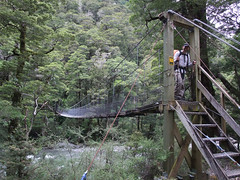 trail(0.0), rolling stock(0.0), rainforest(1.0), tree(1.0), canopy walkway(1.0), forest(1.0), rope bridge(1.0), wilderness(1.0), jungle(1.0), bridge(1.0),