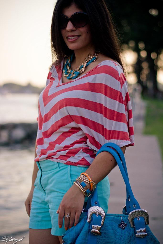 turquoise shorts-3.jpg