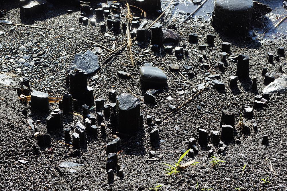 萼溫斷崖,朝陽步道-058