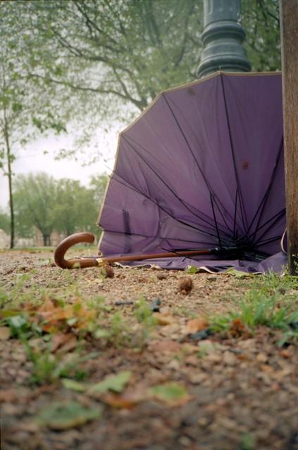 Purple Fancy Umbrella, Queen Square