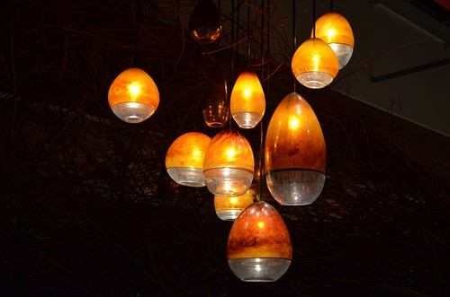 lamps in nest