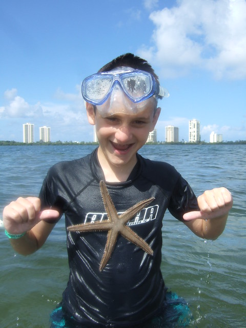 Brian finds a beaded starfish.
