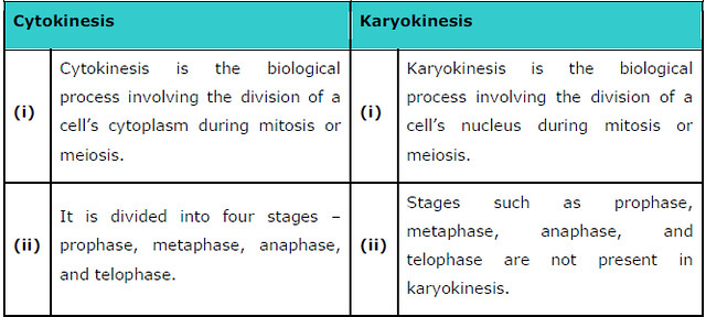 NCERT Solutions Class 11 Biology Chapter 10 – Download PDF