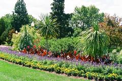 Coventry Gardens