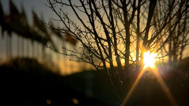 Avene 'Losing The Sun' video