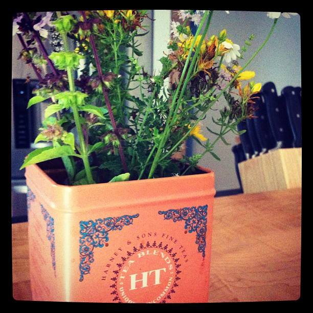 Flowered herbs looking adorable in a tea tin