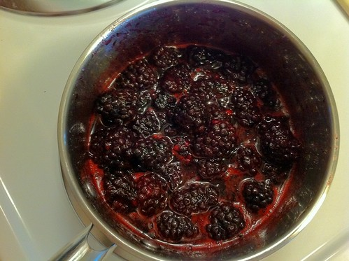 Blackberries and Sugar Forming Syrup