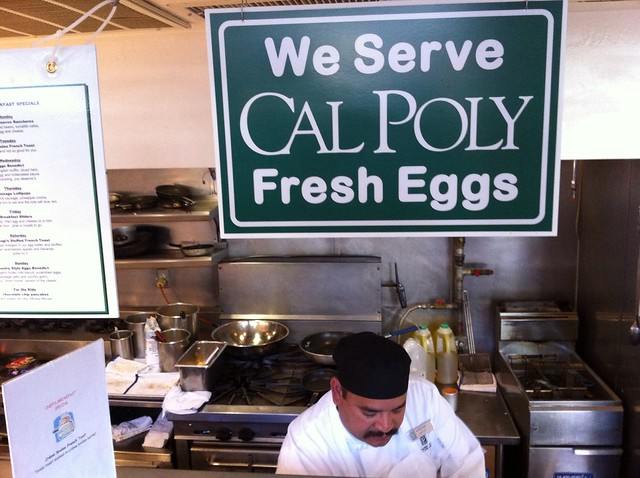 We Serve CalPoly Fresh Eggs