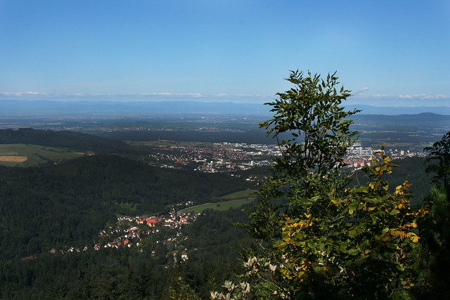 View from the Black Forest