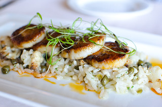 Pan Fried Scallops and Risotto