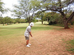 Makaha Valley Country Club 081