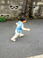 朝散歩 (2012/8/15)
