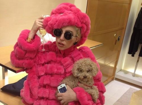 Lady Gaga Sesame Street Look