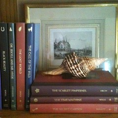 Mixing art & things from nature into ur bookshelf arrangement keeps it pretty! #organizing #clutterbusters