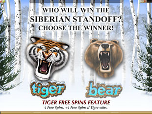 Tiger vs. Bear Siberian Battle Feature