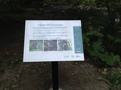 sign in high park Toronto at the top of grenadier pond with three of my photos of raccons by gashphoto