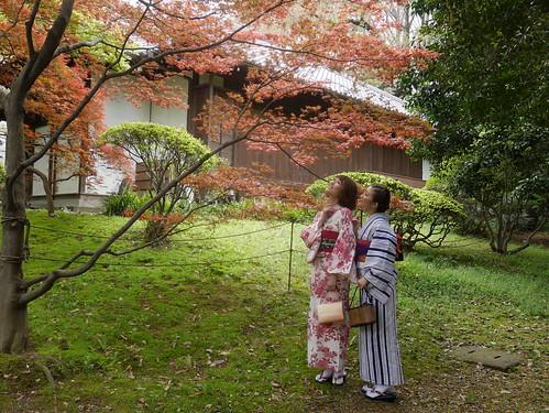 Autumn Yukata