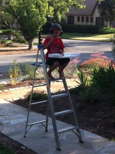 Ezra on a ladder