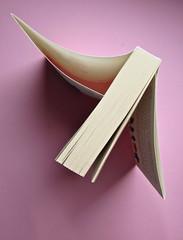 Sergio Pretto, Novecento Rom, CartaCanta 2012. Progetto grafico e logo: Oblique Studio, ill. di cop.: Sara Stefanini. Taglio superiore (part.), 1