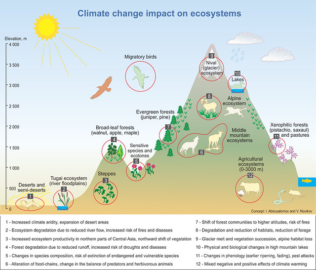 climate change impacts in central truro The regional impacts of climate change: other reports in this collection  the extensive central portion of latin america is characterized largely by humid.