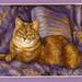 Cofy Cat Pastel